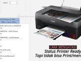 Penyebab-dan-cara-mengatasi-printer-ready-tetapi-tidak-bisa-print
